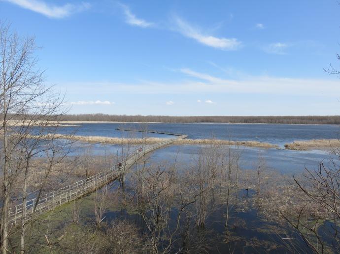 Une tour d'observation permet d'admirer ce paysage, et plus spécifiquement les oiseaux